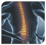 Canberra Spine Centre Back Pain | Chiropractor Canberra